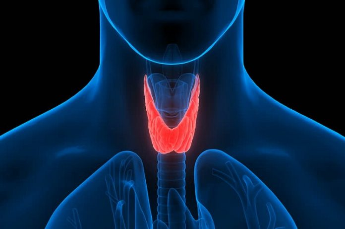 thyroid and its treatment