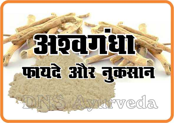 Benefits of ashwagandha, Tips for headache dandruff and indigestion, Best Ayurveda clinic, Sexologist in lucknow, Herbal clinic, Piles clinic in lucknow