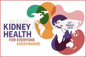 World Kidney Day कब और क्यों मनाया जाता है वर्ल्ड किडनी डे