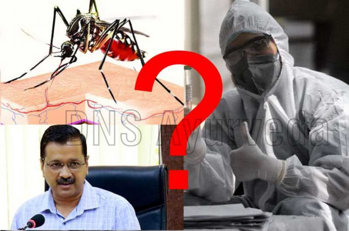 Dengue in Delhi Spreading during COVID-19 Pandemic